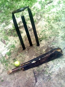 Cricket at Home in Kerala :)