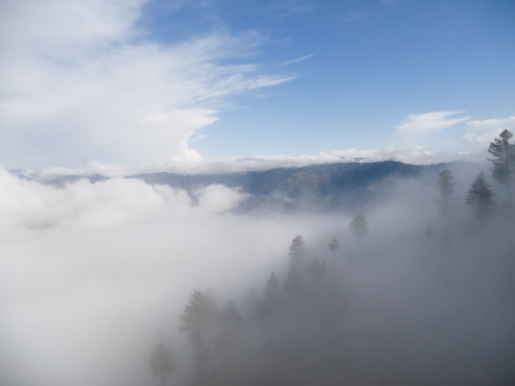 Misty Breswana Hills